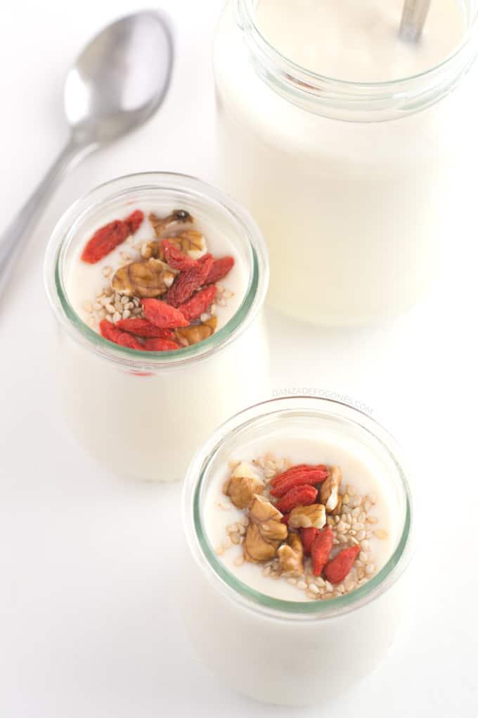 Yogurt de soja casero - danzadefogones.com