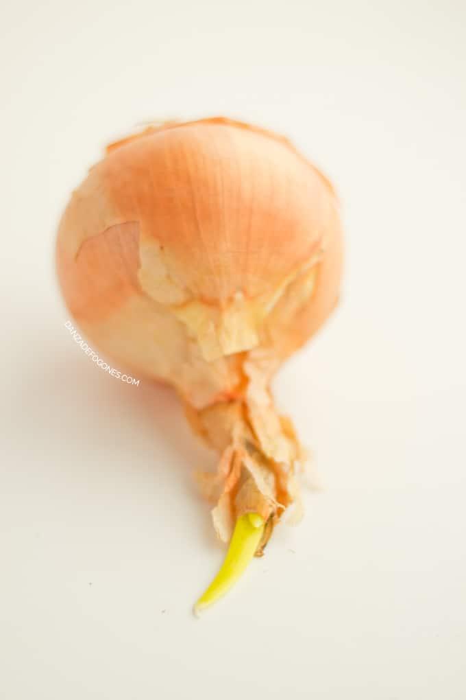 Propiedades y beneficios de la cebolla - danzadefogones.com