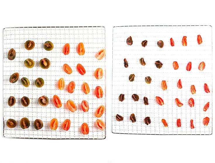 Cómo deshidratar tomates - Deshidratar tomates en una deshidratadora es muy fácil, sólo tienes que trocearlos, colocarlos en la bandejar y esperar.