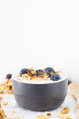 Yogur Vegano de Coco (2 Ingredientes)