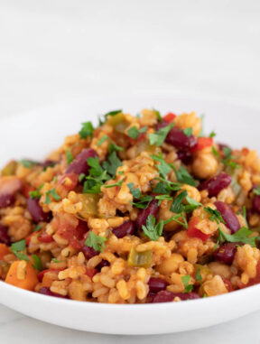Foto de perfil de un plato hondo con arroz jambalaya vegano y perejil por encima